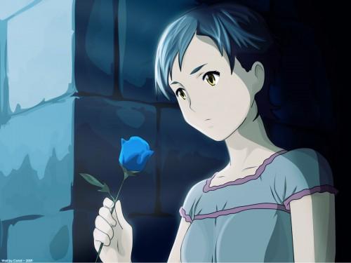 Minitokyo » Blood+ Wallpapers » Blood+ Wallpaper: Phantom's Blue Rose