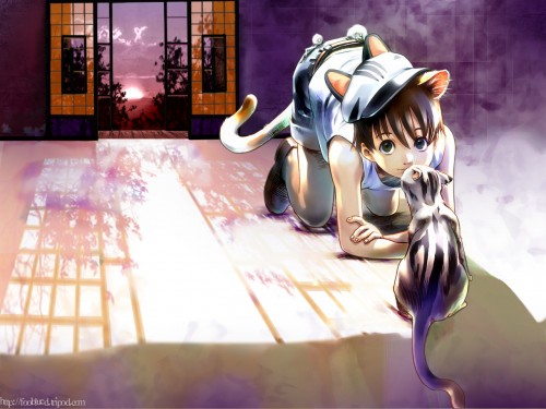 Creatures Wallpaper: Neko Boy. Anime Wallpaper. 1280x960 Wallpaper