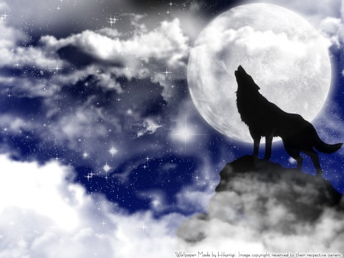 wallpaper wolf. hairstyles Wolf Moon Wallpaper