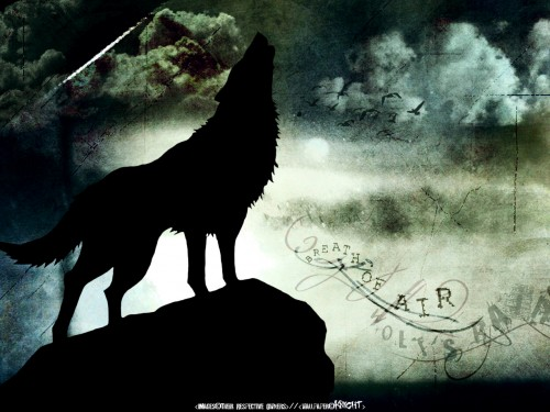 Minitokyo » Wolf's Rain Wallpapers » Wolf's Rain Wallpaper: Breath of Air